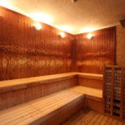 丹波山温泉 のめこい湯のサウナ室